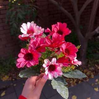 (SALE!) (PLEASE TAKE THEM) Mini Colorful Flowers