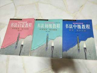 Chinese Calligraphy Book