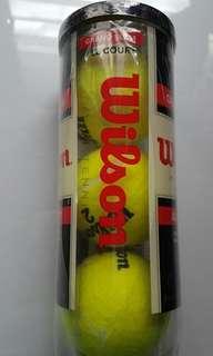 Wilson Tennis Ball