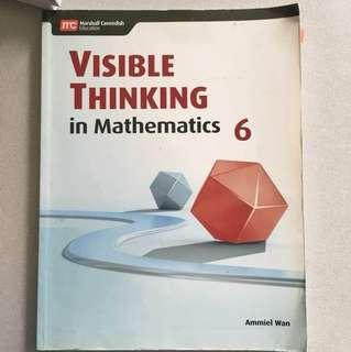 Visible thinking in Mathematics 6
