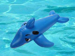 Pool inflatable dolphin rider