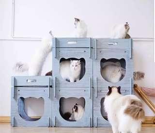 貓貓木色貓爪架