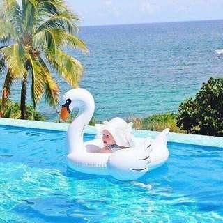 🚚 Baby Swan Float