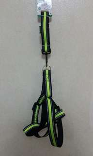 Dog leash with harness (Medium)