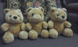 3 Stooges Bear 3pcs set