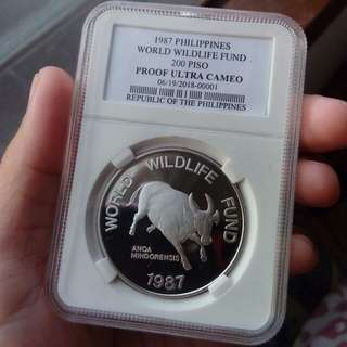 World Wide Fund 1987 200 Piso Commemorative Coin (Proof)
