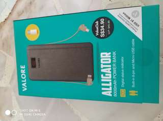 Power Bank (8000mAh)