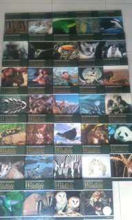 Encyclopedia of wildlife