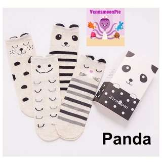 4pcs Kid's Socks (Panda)
