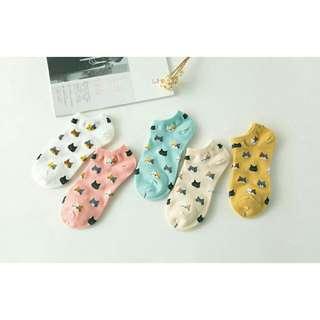 3 for 100 cat socks! ONHAND