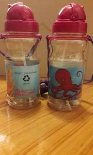 Water Bottles x2 (universal studio sentosa)