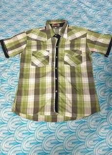 Green Checkered Polo