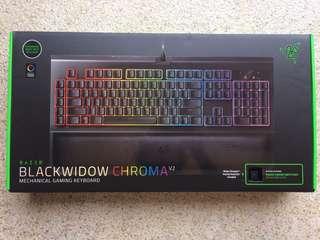 Razer Blackwidow Chroma V2 (Green Switch)