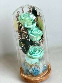 Preserved Teal Roses with wooden base