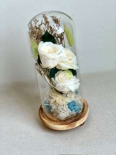 Preserved Champagne Rose with wooden base