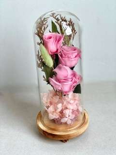 Preserved Pink Roses with wooden base
