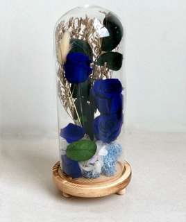 Preserved Blue Roses with wooden container