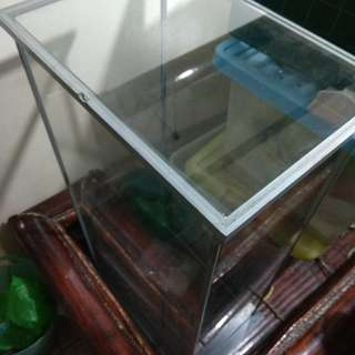 Display case made in japan