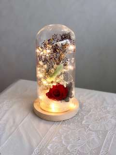Preserved Red rose & baby breath with LED light