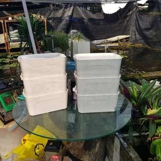 Vermin compost kit .