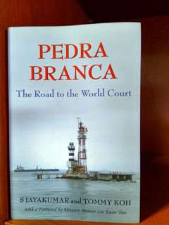 pedra branda road to the world court politics