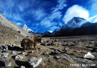 TOUR EVEREST BASE CAMP TREKKING
