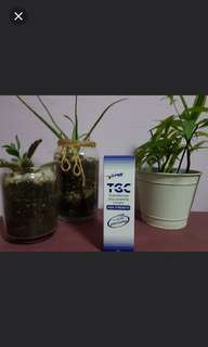 (Instock) TGC transdermal Glucosamine Cream High Strength 45g/75g