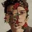 Shawn Mendes | Shawn Mendes