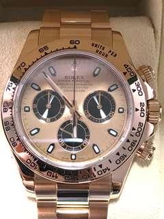 Rolex Daytona Everose Gold Rose 116505