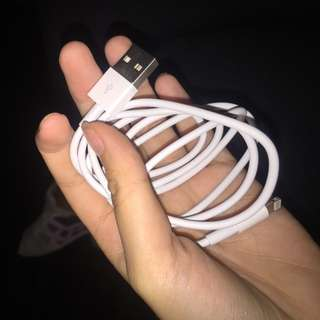 Apple Cord and Adapter
