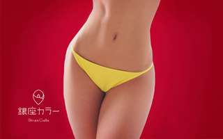 3 Sessions of Brazilian IPL + Lifetime Underarm IPL Hair Removal for 1 Person