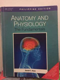 Anatomy and Physiology by Rizzo