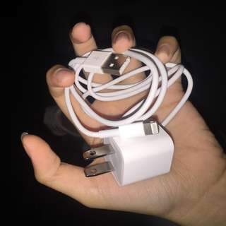 Apple Original cord and adapter set