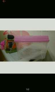 🚚 塑膠魚缸 飼養箱