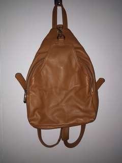 Brown Back-Pack Bag