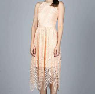 Hollyhoque lace midi dress