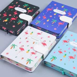 Summer Notebooks