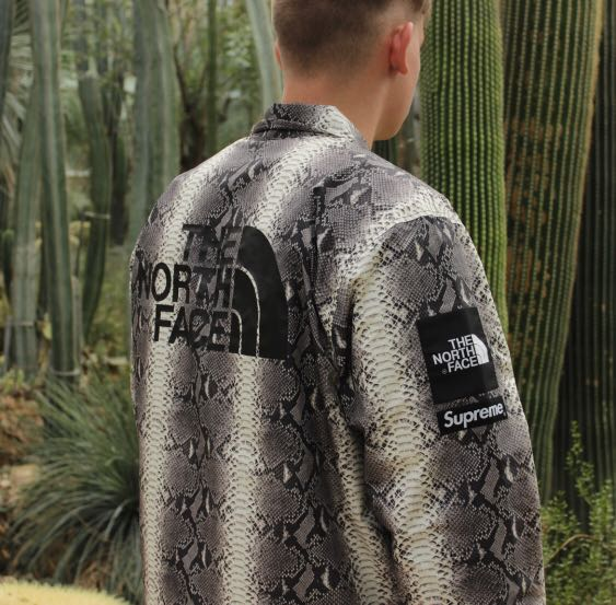 2bcc76fd29f0 Supreme x The North Face Snakeskin Coaches Jacket M