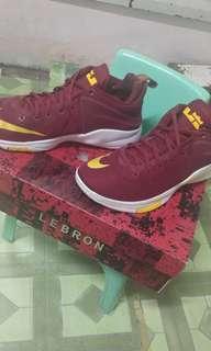 Nike LBJ witness (orig)