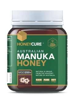 HONEYCURE - 澳洲 MGO250+ 麥盧卡蜂蜜 (500g)