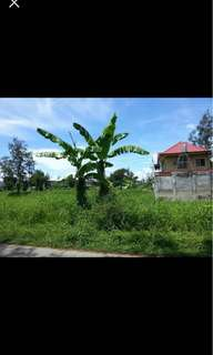 Lot for sale At Baybreeze Executive Village Brgy wawa Taguig