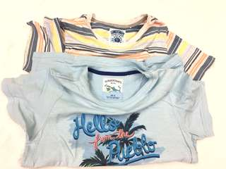 Lot: Gingersnaps Boys tshirt size 14