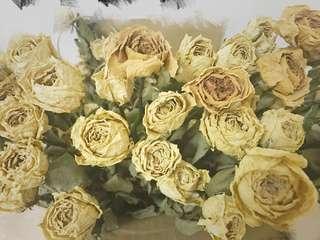 🚚 玫瑰 乾燥花 拍攝道具 手作素材