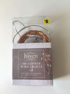 Copper 100 String Lights Warm White Lights Battery Operated