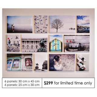 [Free Shipping] 12 Panels Customized Canvas Prints