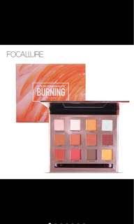 NEW Focallure Burning Eyeshadow