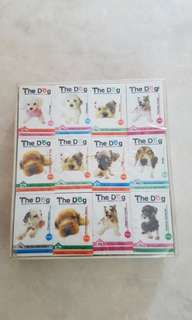 The Dog erasers (pack of 48 pieces)