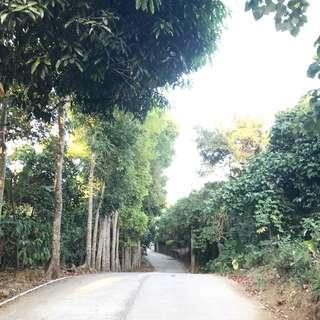 Tagaytay Lot 600 sqm