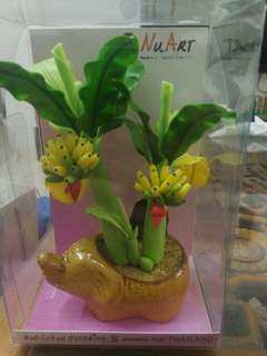 Birthday gift - banana tree