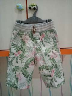 Gingersnaps Boys Nature Pants 6 Y